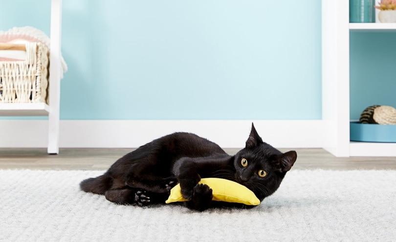 Yeowww! Catnip banana cat toy_chewy