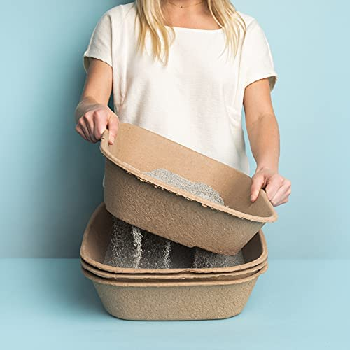 woman carrying Kitty Sift Disposable Sifting Litter Box