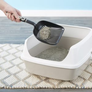Cat's Pride Total Odor Control Unscented Clumping Clay Cat Litter in a litter box
