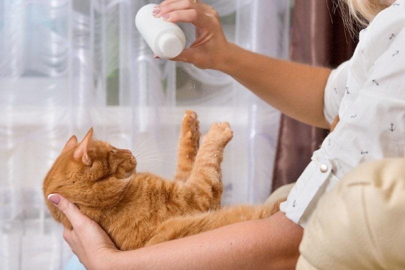 a woman applying dry shampoo to a cat