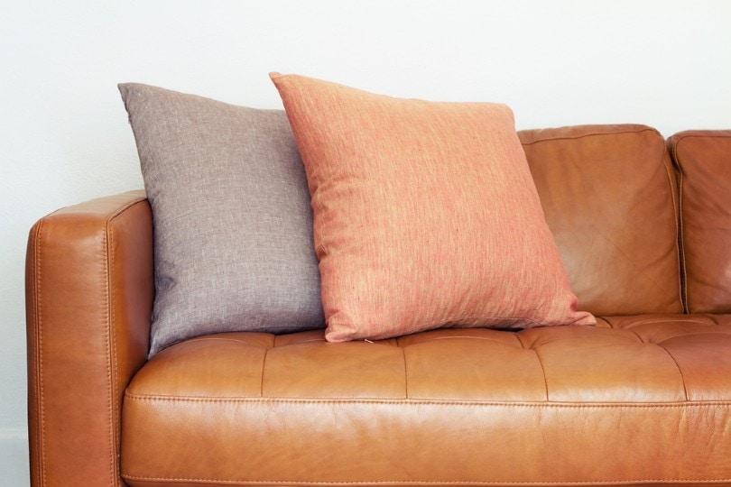 close up of tan leather sofa