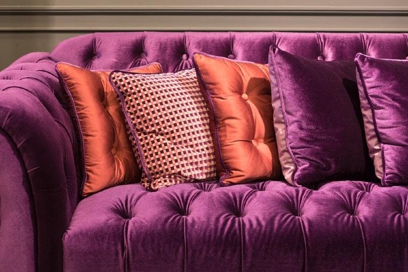 close up of violet velvet sofa